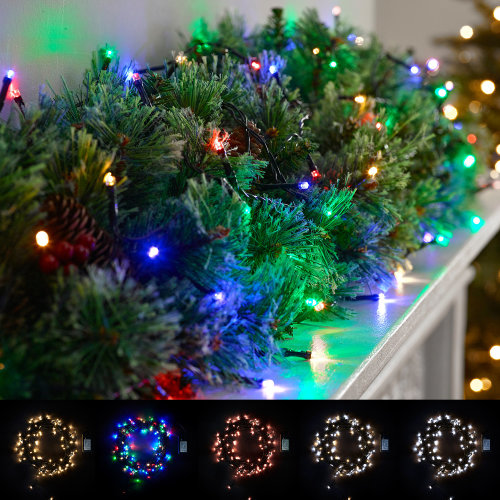 Winter Workshop LED Battery Powered Christmas Lights Multi Function In & Outdoor