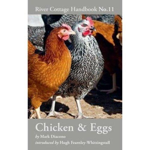 Chicken & Eggs