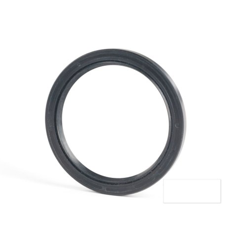 5x18x10mm Oil Seal Nitrile Double Lip With Spring