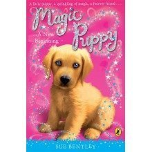 Magic Puppy: a New Beginning