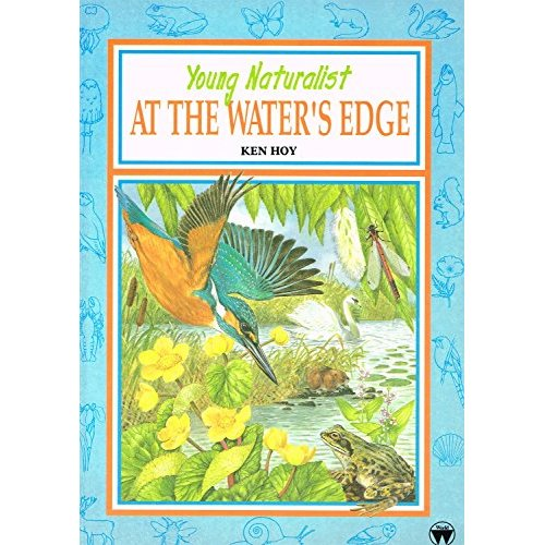 Young naturalist at the water's edge