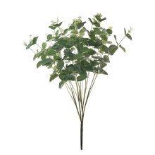 Eucalyptus Small Bunch