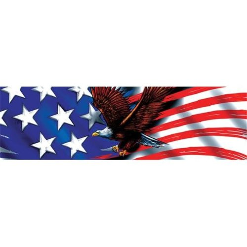 010076L Window Graphics Patriot Eagle Flight Design