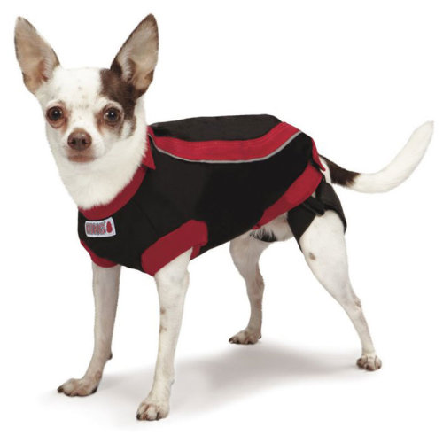 Kong Anxiety Reducing Shirt for Dogs, Calming Stress Relief