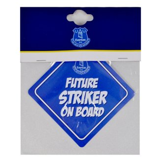 Everton FC Childrens/Kids Baby On Board Sign