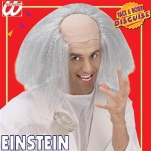 Adult's Einstein Headpiece