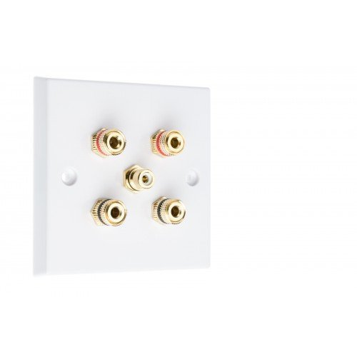 White Plastic 2.1 Speaker Wall Plate 4 Terminals + RCA Phono Socket - No Soldering Required