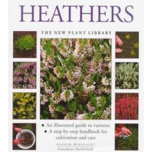 Heathers (New Plant Library)