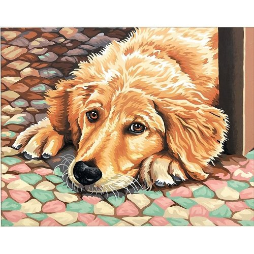 Dpw91431 - Paintsworks Paint by Numbers - Dog Tired