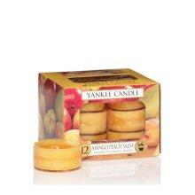 Yankee Candle Tea Light Candles, Mango Peach Salsa, Pack of 12