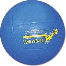 BSN Official Wallyball Ball