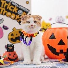 Pet Spider Collar Dog Cat Puppy Kitty Cap Halloween