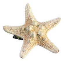 Ivory Mermaid Starfish Hairclip