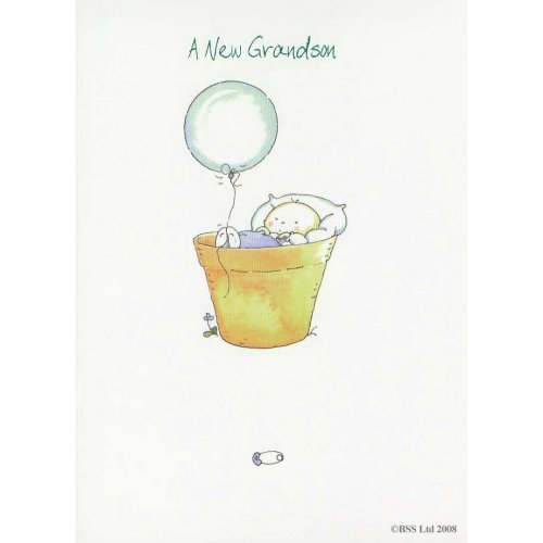 A New Grandson Greeting Card