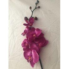 Artificial Silk Phalaenopsis Orchid Spray - 77cm, Fuchsia
