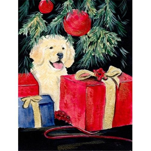 Carolines Treasures SS8578CHF 28 x 40 in. Golden Retriever House Size Canvas Flag