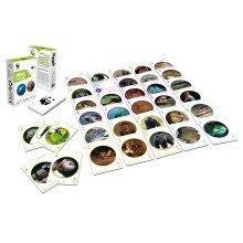 WildlifePlaying Cards - WWF